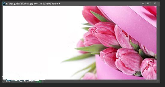 Thiết kế mẫu thiệp với phần mềm Photoshop
