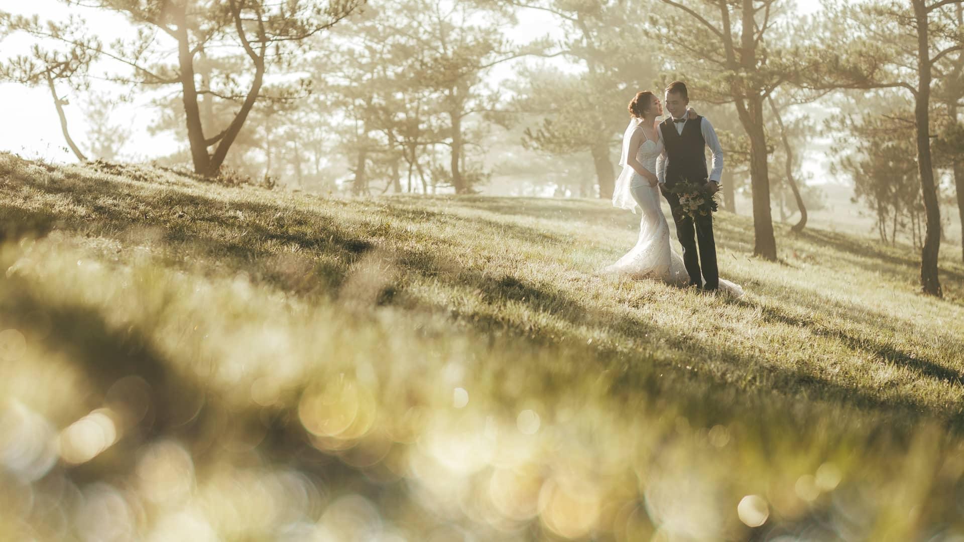 chụp hình cưới Đồi cỏ hồng